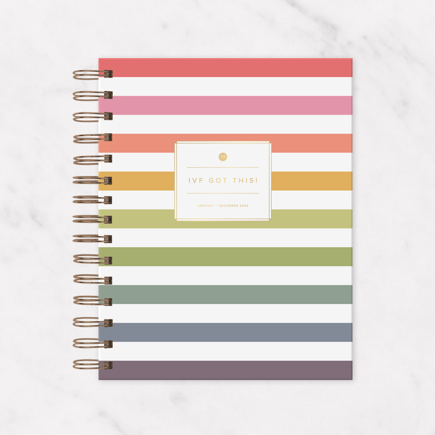 2019 - 2020 IVF Planner Rainbow Stripe