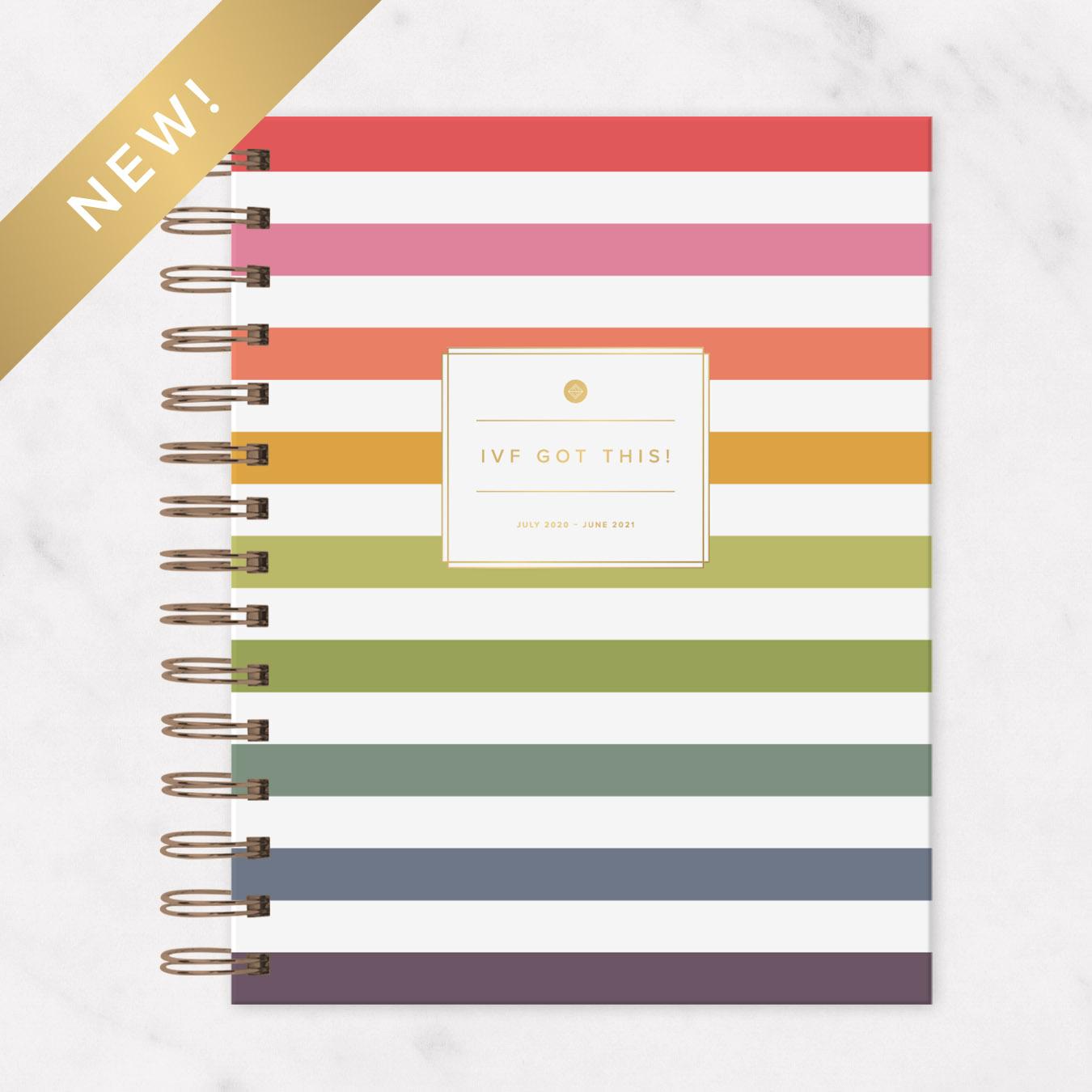 2020 - 2021 IVF Planner Rainbow Stripe